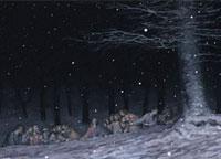 Vorschau Bildimpuls: Nachts im Wald